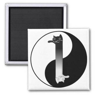Toon Tao of Longcat Magnet