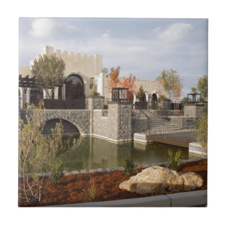 Tooth and Nail Castle Winery in Paso Robles Tile