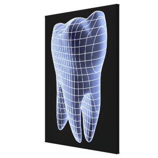 Tooth, computer artwork of a molar tooth canvas print