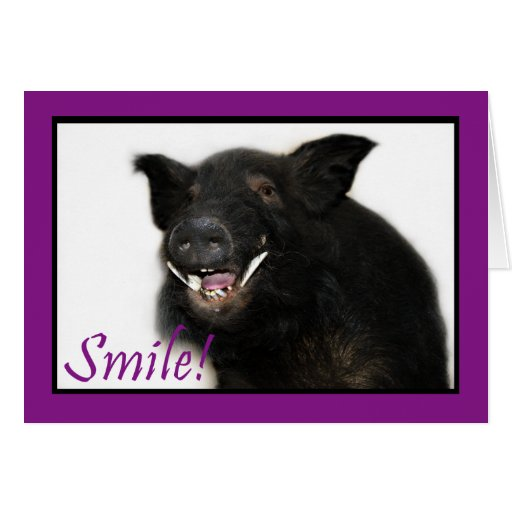 Toothy Hog Smile Greeting Cards