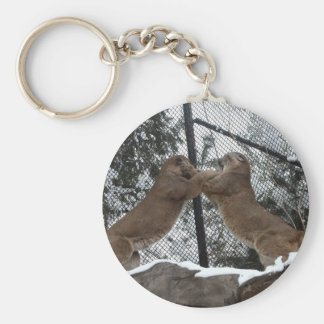TOP10-1_Cat_Fight Keychain
