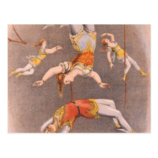 TOP Acrobat in the House Postcard