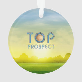 TOP Baseball Prospect Ornament