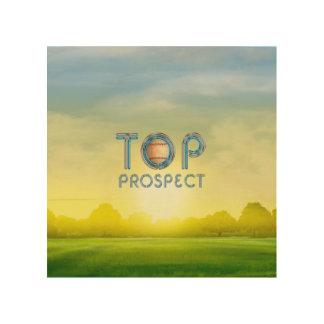 TOP Baseball Prospect Wood Wall Art