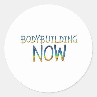 TOP Bodybuilding Now Classic Round Sticker