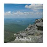 Top de la montaña de Whiteface, Adirondacks, NY Tejas Cerámicas