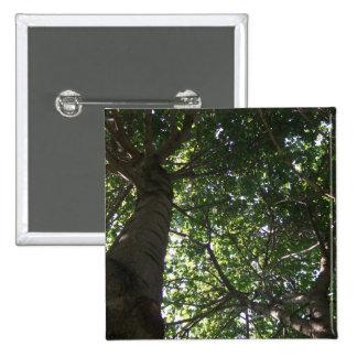 Top del árbol pin