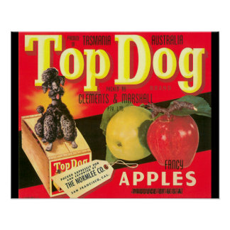Top Dog Apple Advertisement 16 x 20 Poster
