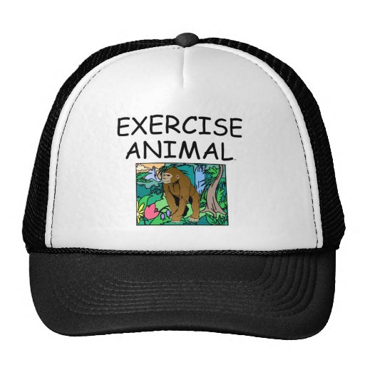 TOP Exercise Animal Hat