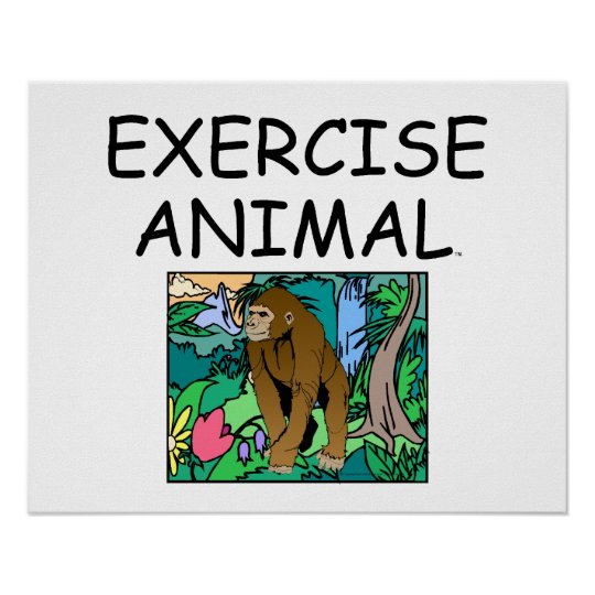 TOP Exercise Animal Poster