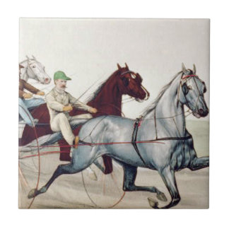 TOP Harness Racing Tile