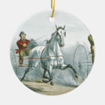 TOP Horse Poetry Christmas Tree Ornament