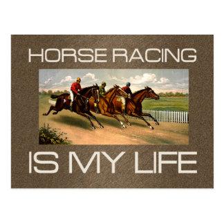 TOP Horse Racing Is My Life Postcard