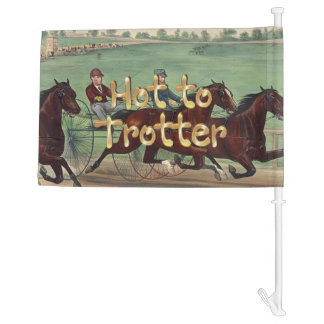 TOP Hot to Trotter Car Flag