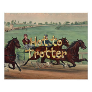 TOP Hot to Trotter Poster