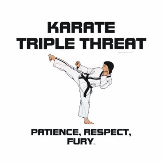 TOP Karate Slogan Cutout