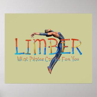 TOP Limber Pilates Print
