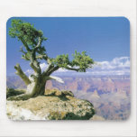 Top O' The Canyon Mouse Pad