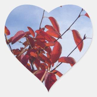 TOP OF AUTUMN TREE HEART STICKER