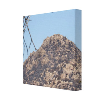 Top of The Pinnacles Canvas Print