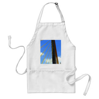 Top of the Skyway Aprons
