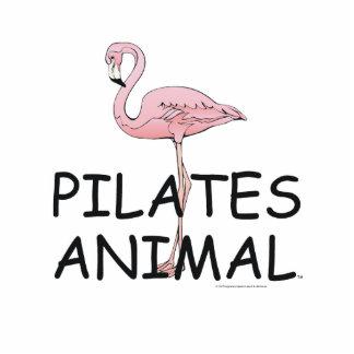 TOP Pilates Animal Cutout