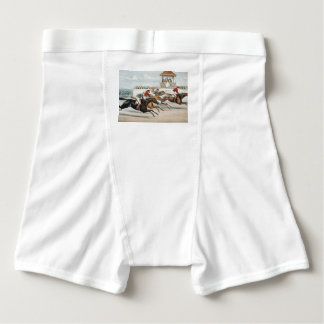 TOP Race to Victory Boxer Briefs