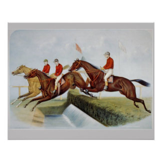 TOP Steeplechase Poster