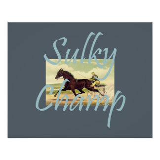 TOP Sulky Champ Poster