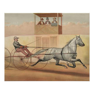 TOP Trot Champ Poster
