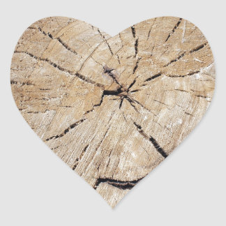Top view close up on an old tree stump heart sticker