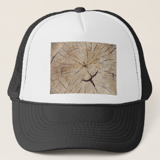 Top view close up on an old tree stump trucker hat