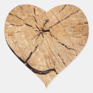 Top view closeup on an old tree stump heart sticker
