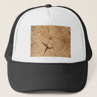 Top view closeup on an old tree stump trucker hat