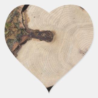 Top view of a big cut tree heart sticker