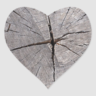 Top view of a cut tree closeup heart sticker