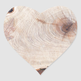 Top view of a fresh tree stump from felled maple heart sticker