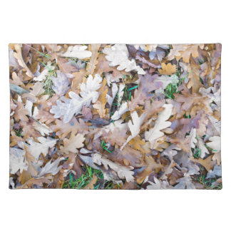Top view of a layer of fallen oak leaves placemat