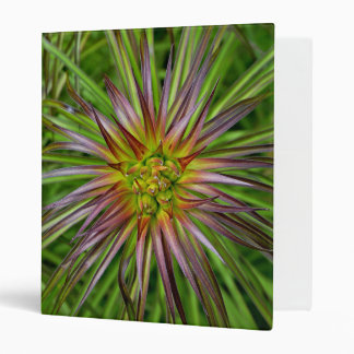 Top View of a Lilium Regale Lily Flower 3 Ring Binder