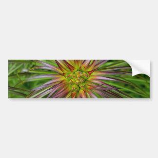 Top View of a Lilium Regale Lily Flower Car Bumper Sticker