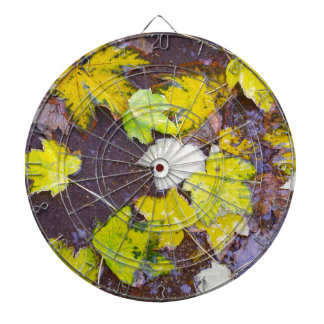 Top view of a wet autumn maple leaves closeup dartboard with darts