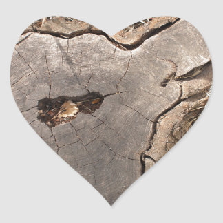 Top view of an old stump of cut tree cracked heart sticker