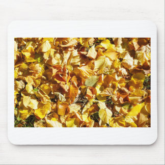 Top view of fallen autumn leaves linden mouse pad
