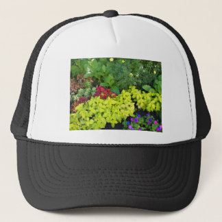 Top view of multicolored and colorful flower bed trucker hat