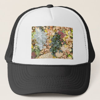 Top view of the autumn flowerbed trucker hat