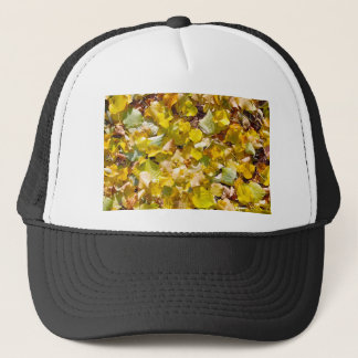 Top view of the bright green, yellow and orange trucker hat