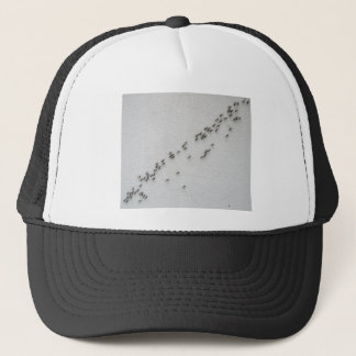 Top view of the chain of ants trucker hat