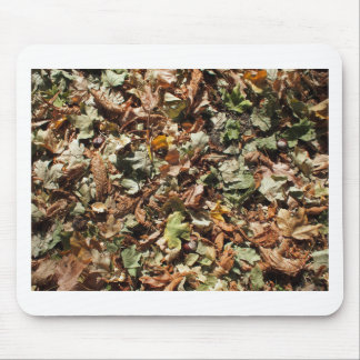 Top view of the green and brown fallen leaves of m mouse pad