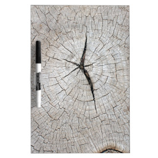 Top view on old grey texture of a tree trunk Dry-Erase board
