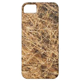 Top view on the dry grass of the land iPhone SE/5/5s case